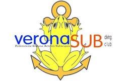 logo vrsub03