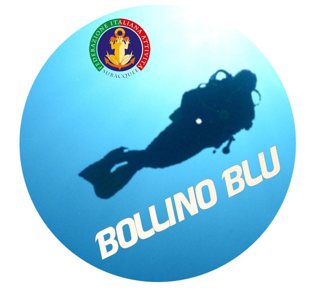 bollinoblu1